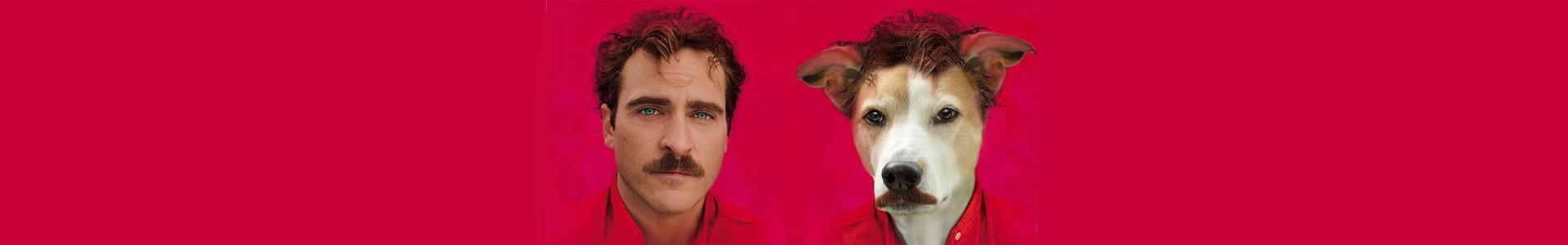 10 posteres de filmes recriados com cachorro