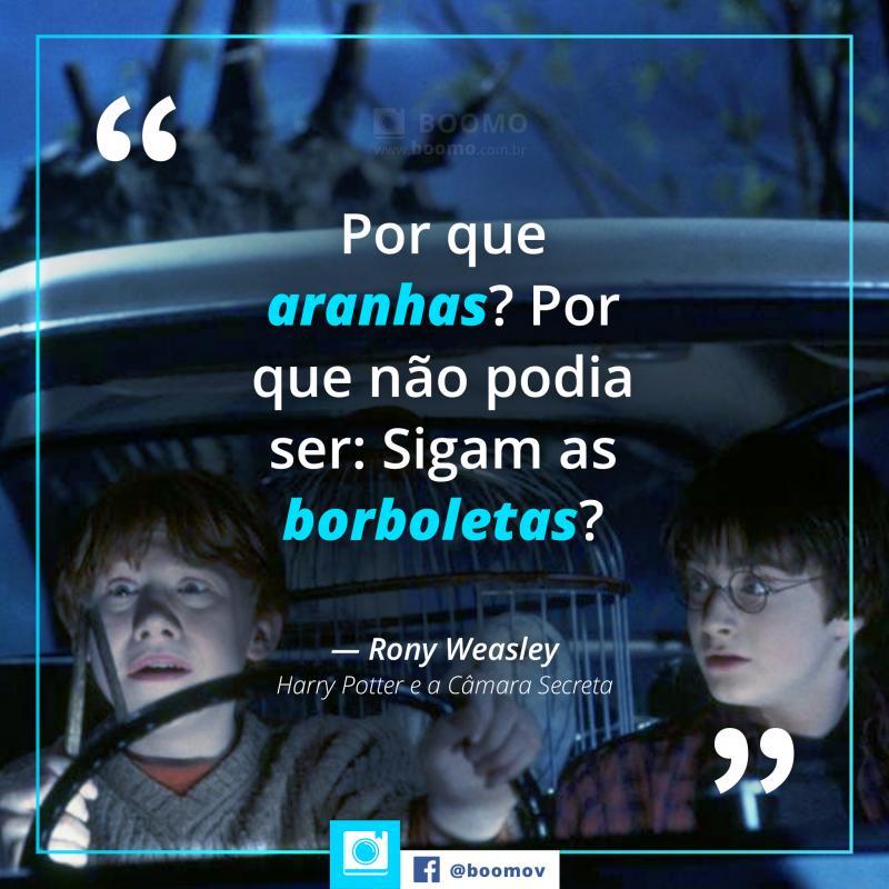 15 Melhores Frases E Citações De Harry Potter Boomo